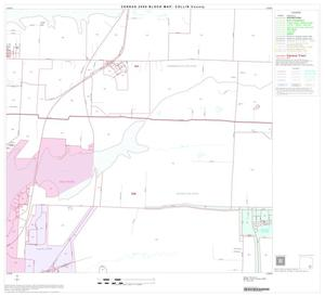 Primary view of object titled '2000 Census County Block Map: Collin County, Block 40'.