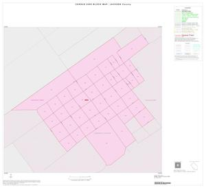 Primary view of object titled '2000 Census County Block Map: Jackson County, Inset E01'.