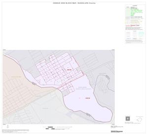 Primary view of object titled '2000 Census County Block Map: Guadalupe County, Inset D01'.