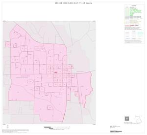 Primary view of object titled '2000 Census County Block Map: Tyler County, Inset B01'.