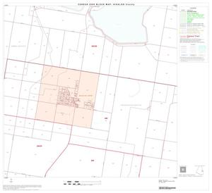Primary view of 2000 Census County Block Map: Hidalgo County, Block 52