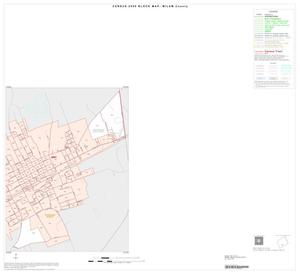 Primary view of object titled '2000 Census County Block Map: Milam County, Inset E02'.