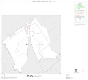 Primary view of object titled '2000 Census County Block Map: Caldwell County, Inset B01'.