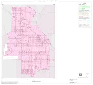 Primary view of object titled '2000 Census County Block Map: Coleman County, Inset B01'.