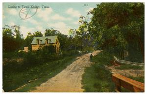 Primary view of object titled 'Coming to Town, Orange, Texas'.