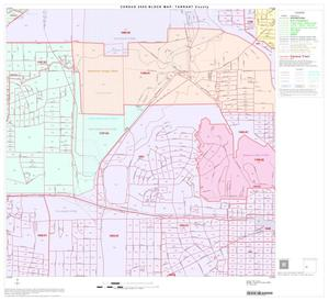 Primary view of object titled '2000 Census County Block Map: Tarrant County, Block 53'.