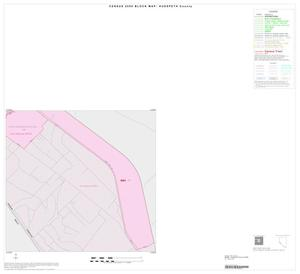 Primary view of object titled '2000 Census County Block Map: Hudspeth County, Inset D04'.