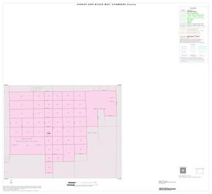 Primary view of object titled '2000 Census County Block Map: Chambers County, Inset D01'.