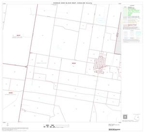 Primary view of object titled '2000 Census County Block Map: Hidalgo County, Block 41'.