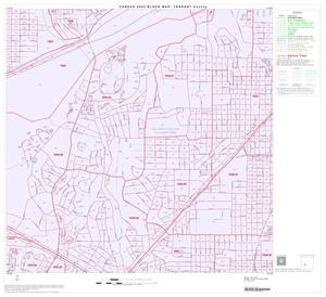 Primary view of object titled '2000 Census County Block Map: Tarrant County, Block 64'.