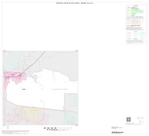 Primary view of object titled '2000 Census County Block Map: Webb County, Inset C01'.