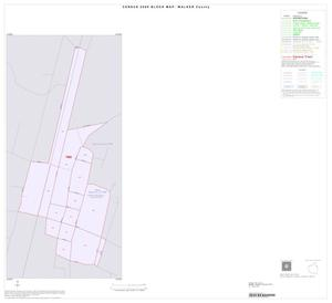 Primary view of object titled '2000 Census County Block Map: Walker County, Inset D01'.