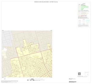 Primary view of object titled '2000 Census County Block Map: Ector County, Inset D01'.