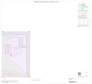 Primary view of object titled '2000 Census County Block Map: Hidalgo County, Inset Q01'.