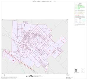 Primary view of object titled '2000 Census County Block Map: Montague County, Inset D01'.