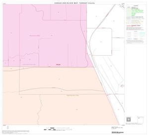 Primary view of object titled '2000 Census County Block Map: Tarrant County, Block 13'.