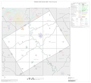 Primary view of object titled '2000 Census County Block Map: Falls County, Index'.