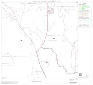 Primary view of object titled '2000 Census County Block Map: Montgomery County, Block 24'.