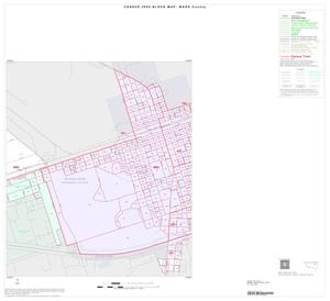 Primary view of object titled '2000 Census County Block Map: Ward County, Inset B02'.