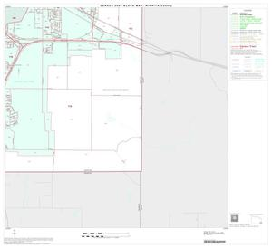 Primary view of object titled '2000 Census County Block Map: Wichita County, Block 28'.