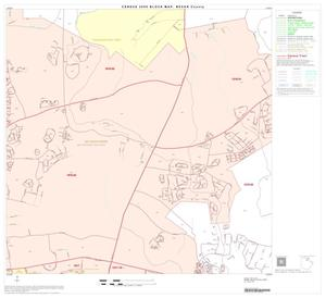 Primary view of object titled '2000 Census County Block Map: Bexar County, Block 22'.
