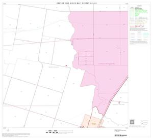 Primary view of object titled '2000 Census County Block Map: Nueces County, Block 36'.