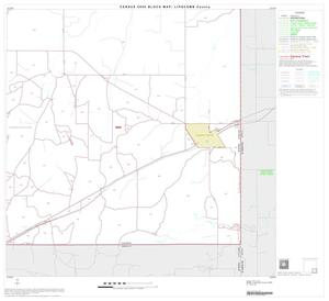 Primary view of object titled '2000 Census County Block Map: Lipscomb County, Block 9'.