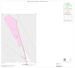 Primary view of object titled '2000 Census County Block Map: Lampasas County, Inset C01'.