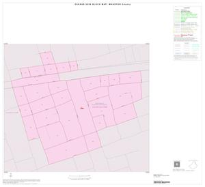 Primary view of object titled '2000 Census County Block Map: Wharton County, Inset A01'.