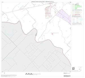 Primary view of object titled '2000 Census County Block Map: Brazos County, Block 17'.