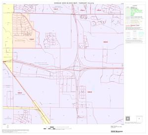Primary view of object titled '2000 Census County Block Map: Tarrant County, Block 35'.
