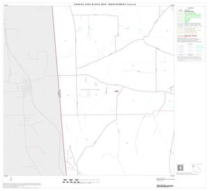 Primary view of object titled '2000 Census County Block Map: Montgomery County, Block 3'.