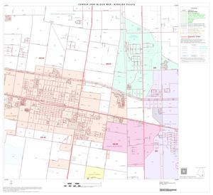 Primary view of object titled '2000 Census County Block Map: Hidalgo County, Block 80'.