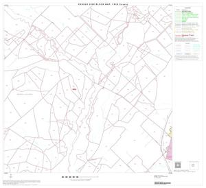 Primary view of object titled '2000 Census County Block Map: Frio County, Block 6'.