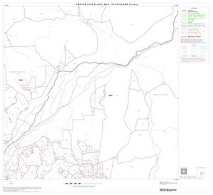Primary view of object titled '2000 Census County Block Map: Hutchinson County, Block 11'.