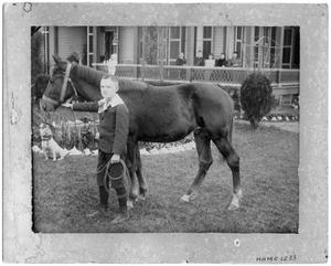 Primary view of object titled 'Unknown boy with a horse in front of a house'.