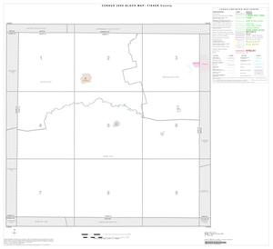 Primary view of object titled '2000 Census County Block Map: Fisher County, Index'.