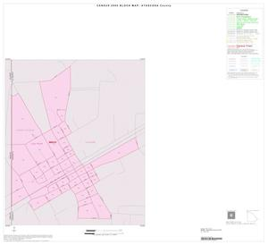 Primary view of object titled '2000 Census County Block Map: Atascosa County, Inset A01'.