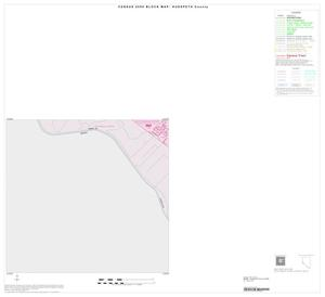 Primary view of object titled '2000 Census County Block Map: Hudspeth County, Inset D03'.