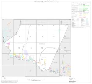 Primary view of object titled '2000 Census County Block Map: Starr County, Index'.