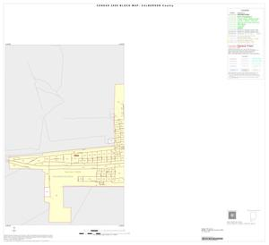 Primary view of object titled '2000 Census County Block Map: Culberson County, Inset B01'.