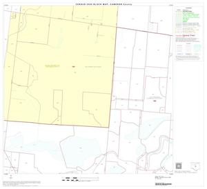 Primary view of object titled '2000 Census County Block Map: Cameron County, Block 30'.