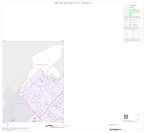 Primary view of object titled '2000 Census County Block Map: Hays County, Inset D01'.