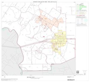 Primary view of object titled '2000 Census County Block Map: Waller County, Block 11'.