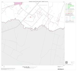 Primary view of object titled '2000 Census County Block Map: Ward County, Block 17'.
