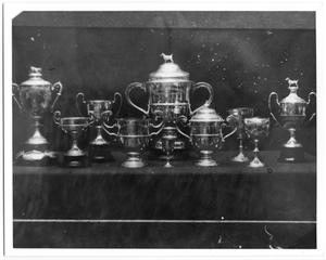 Primary view of object titled 'Farwell Dog Trophies'.