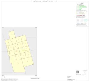 Primary view of object titled '2000 Census County Block Map: Maverick County, Inset A01'.