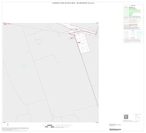 Primary view of object titled '2000 Census County Block Map: Wilbarger County, Inset A06'.