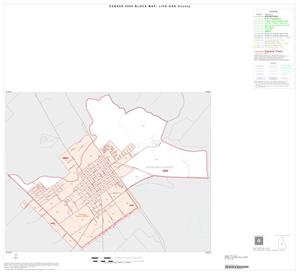 Primary view of object titled '2000 Census County Block Map: Live Oak County, Inset B01'.