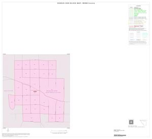 Primary view of object titled '2000 Census County Block Map: Webb County, Inset D01'.